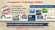 QTP Training Online and Job Assistance in USA