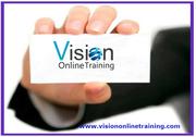 SAP APO Online Training