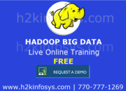 Big Data Online Training and Placement
